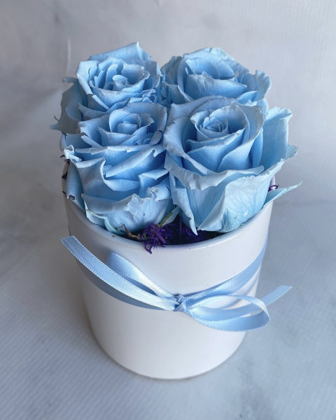 Permanent Rose - Light Blue