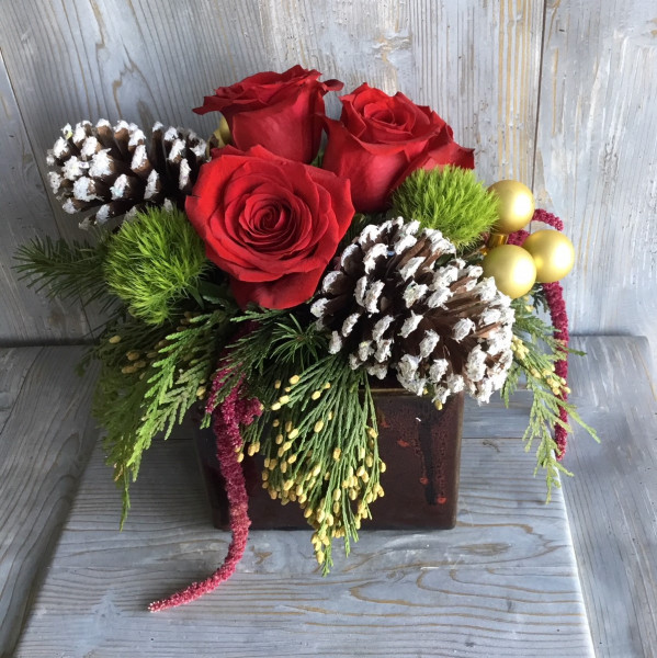 Red Rose and Pine Cone