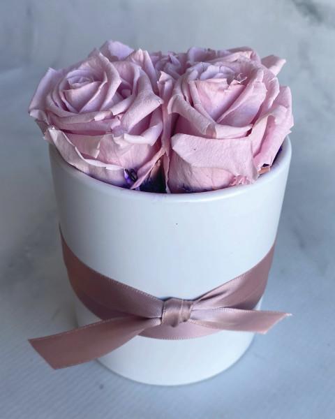 Permanent Rose - Light Pink