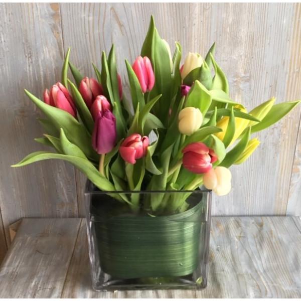 Touching Tulips